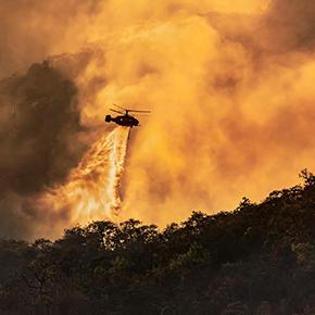 Komplett analys efter skogsbrand